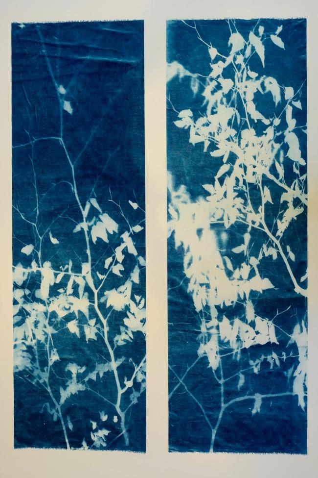 Linnen, cyanotype.